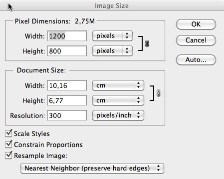 Dimensioni immagine